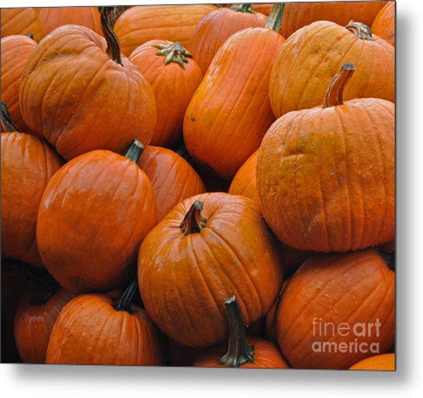 Pumpkin Pile Metal Print