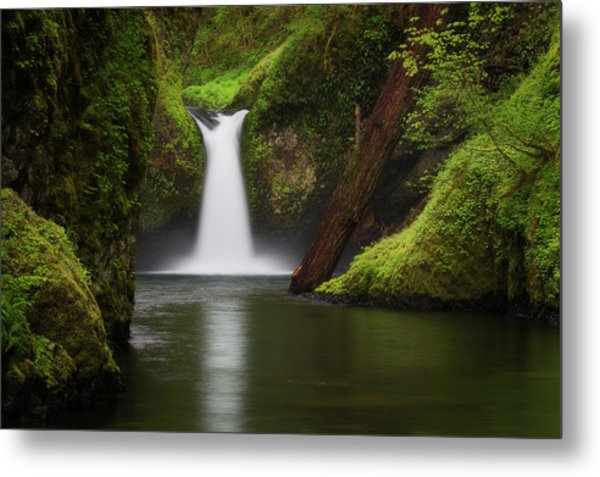Punchbowl Falls, Columbia River Gorge Metal Print