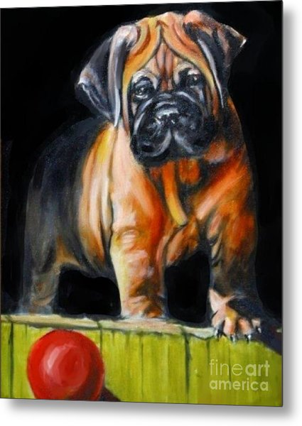 Puppy And Her Red Ball Metal Print