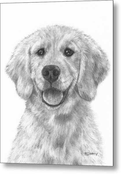 Puppy Golden Retriever Metal Print