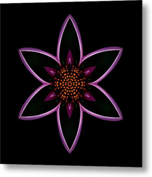 Purple Echinacea Flower Mandala Metal Print