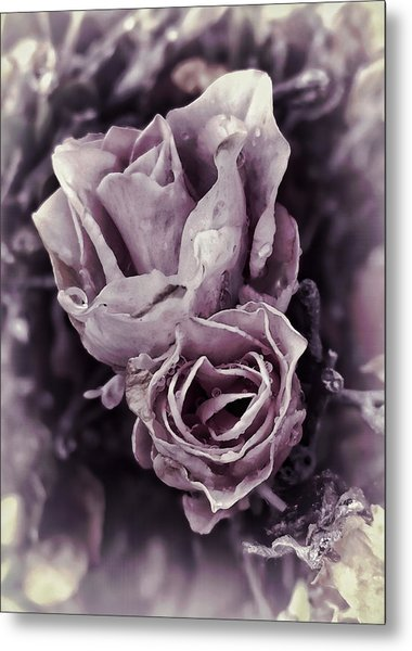 Purple Elegance Metal Print