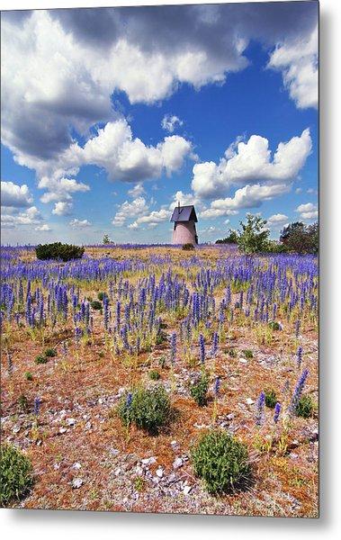 Purple Flower Countryside Metal Print