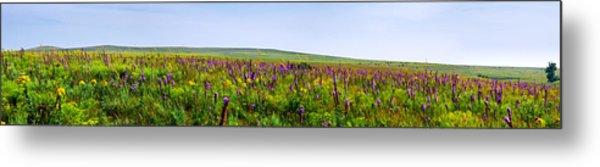 Purple Hills Metal Print
