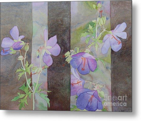 Purple Ivy Geranium Metal Print