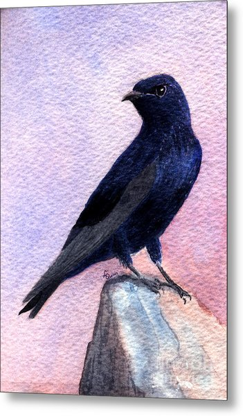 Purple Martin Metal Print