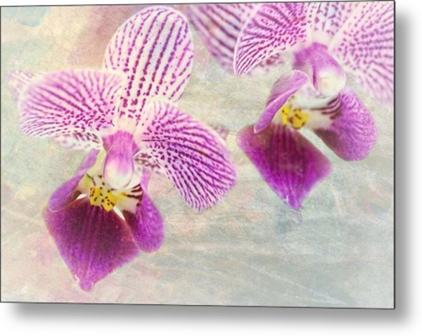 Purple Orchid 2 Metal Print