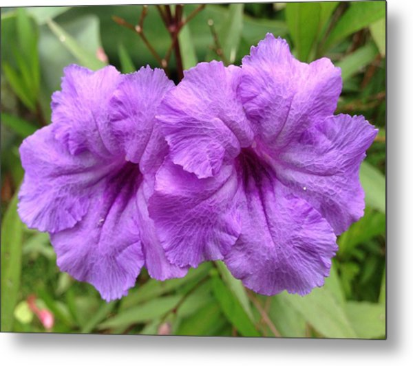 Purple Party Metal Print by Larry Spring
