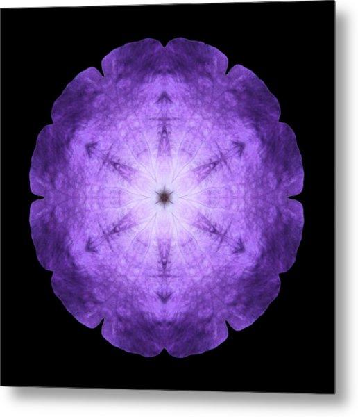Purple Petunia I Flower Mandala Metal Print