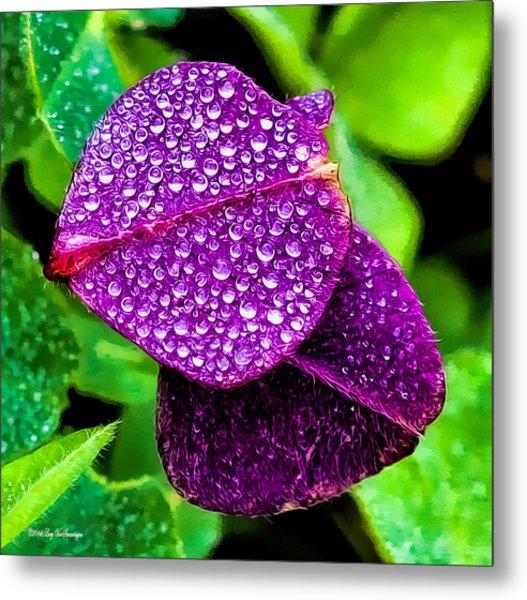 Purple Shimmer Metal Print