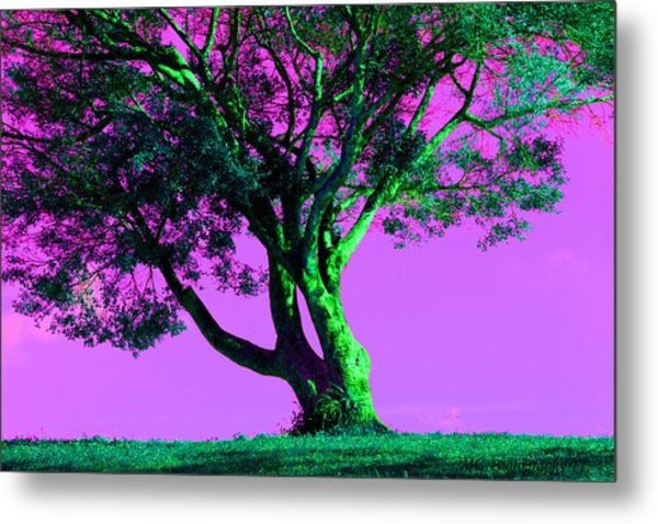 Purple Sky Tree Metal Print