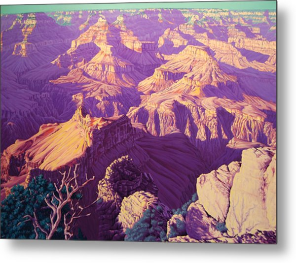 Purple Splendor Metal Print