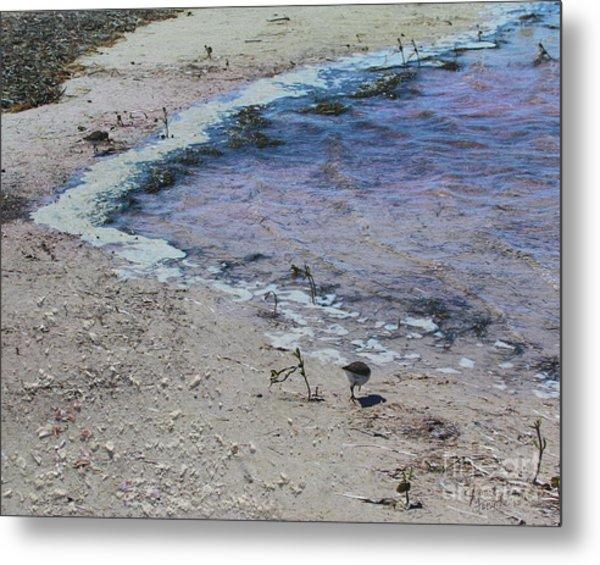 Purple Waters With Sand Metal Print