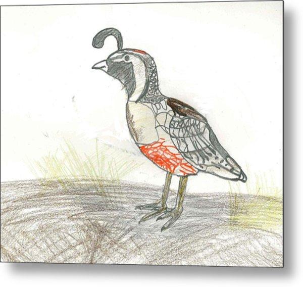 Quail Bird Metal Print by Ethan Chaupiz