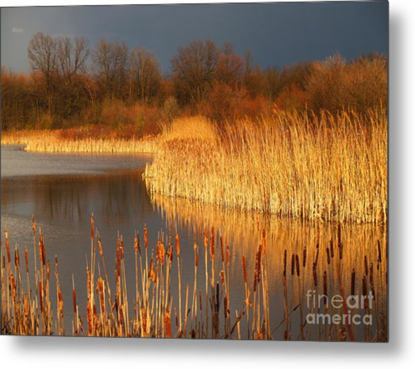 Quakertown Marsh Before Spring Storm Metal Print