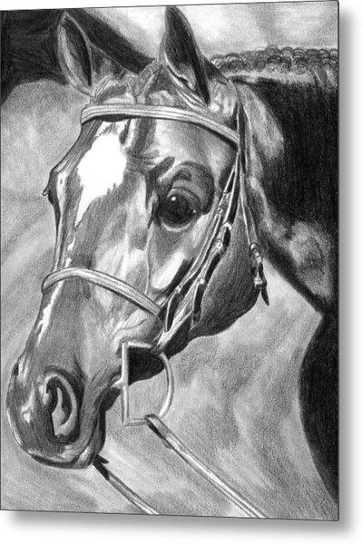 Quarter Horse Hunter Metal Print by Olde Time  Mercantile