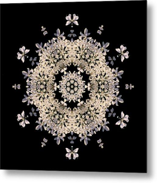 Queen Anne's Lace Flower Mandala Metal Print
