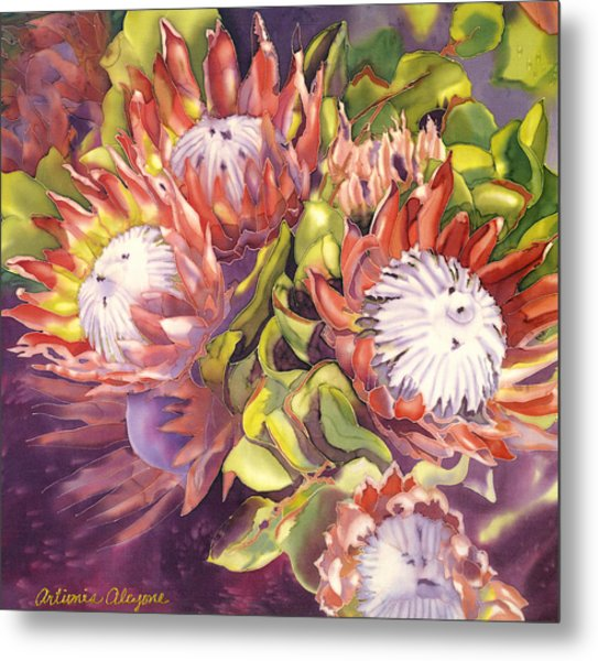 Queen Protea Metal Print