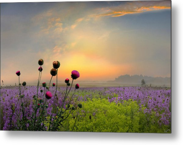 Quiet Evening Metal Print by Igor Zenin