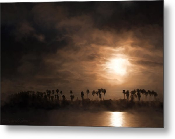 Quiet Sunrise With Fog And Palm Trees Metal Print