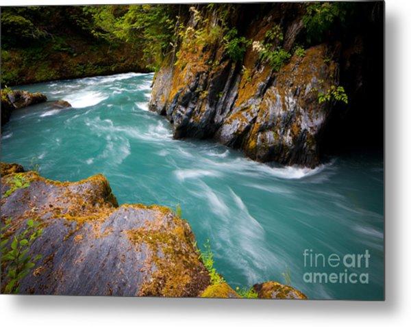 Quinault River Bend Metal Print