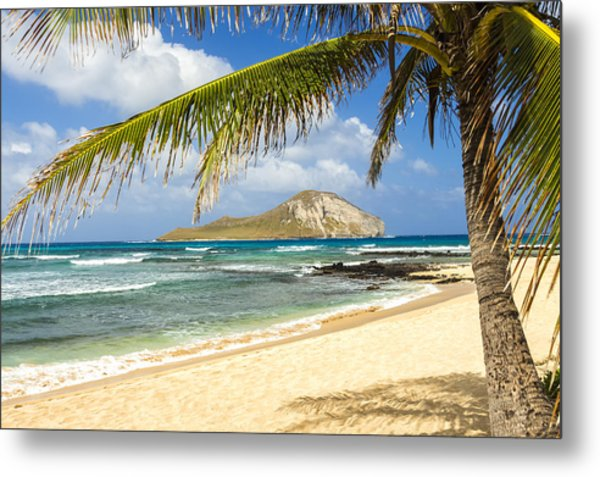 Rabbit Island 1 Metal Print
