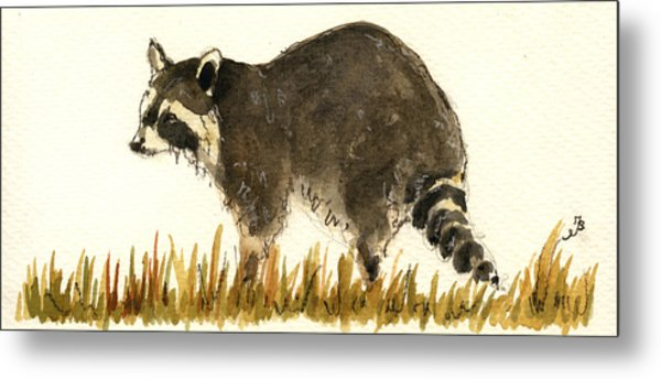 Raccoon In The Grass Metal Print