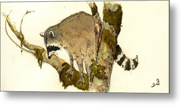 Raccoon On A Tree Metal Print