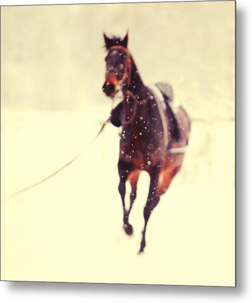Race In The Snow Metal Print