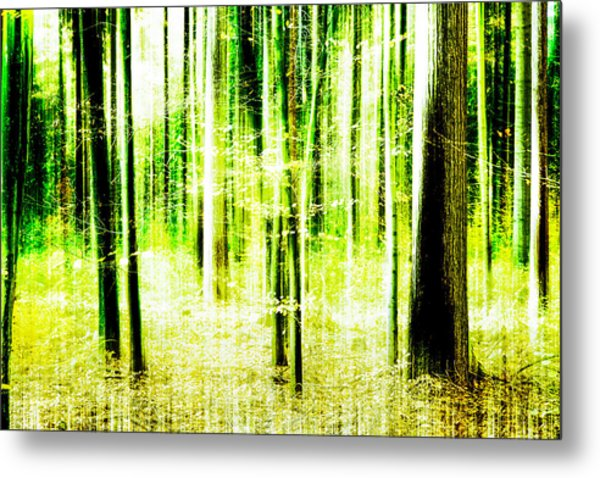 Radiation Forest Metal Print
