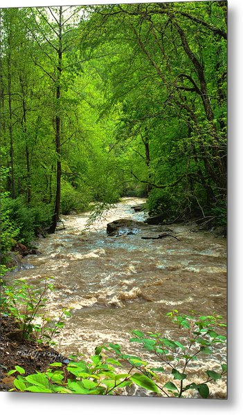 Raging Waters - West Virginia Backroad Metal Print