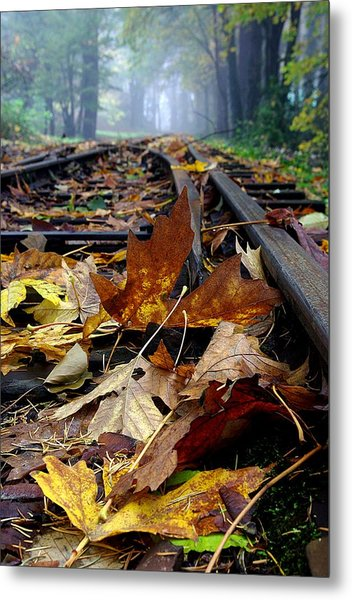 Rails And Leaves Metal Print