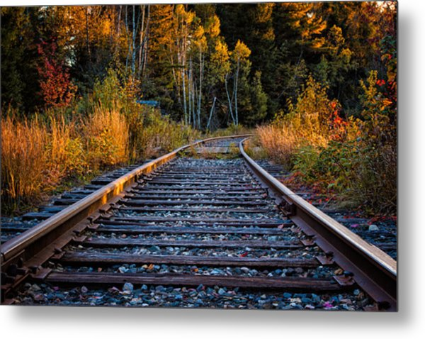 Metal Print featuring the photograph Rails Pondicherry Nwr by Jeff Sinon