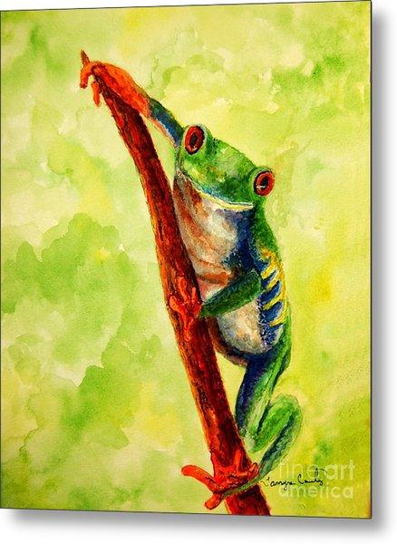 Rain Forest Frog Metal Print
