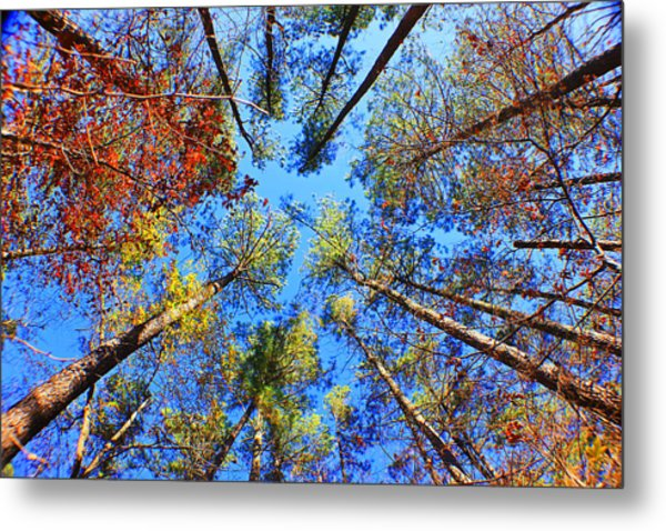 Rainbow Fall Metal Print