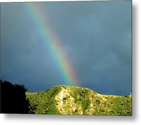 Rainbow I Metal Print