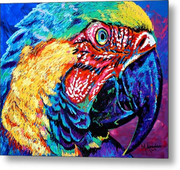 Rainbow Macaw Metal Print