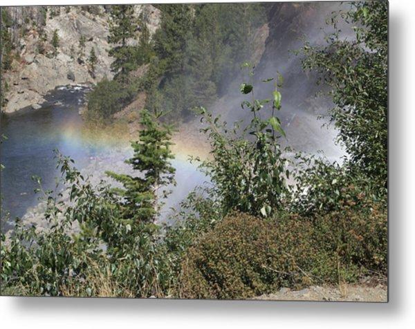 Rainbow Metal Print by Shelley Ewer