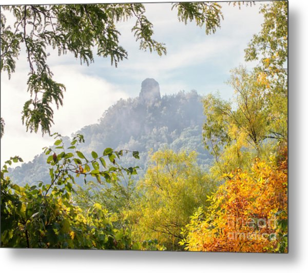 Metal Print featuring the photograph Rainbow Sugarloaf Landscape by Kari Yearous