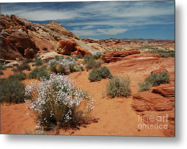 601p Rainbow Vista In The Valley Of Fire Metal Print