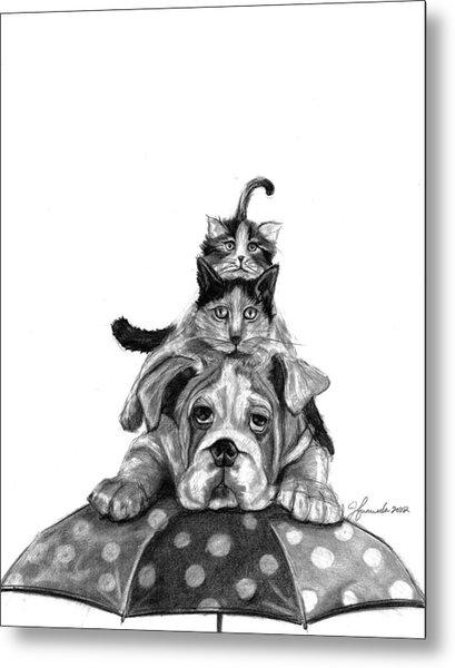 Raining Cats And A Dog Metal Print
