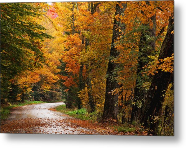 Rainy Autumn Morning Metal Print