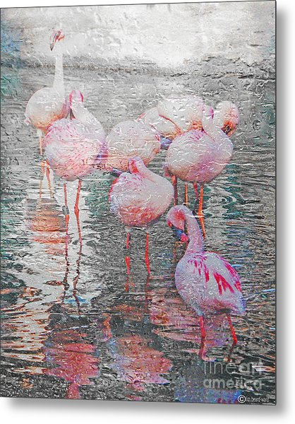 Rainy Day Flamingos Metal Print