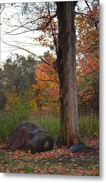 Rainy Fall Day Metal Print by Jennifer  King