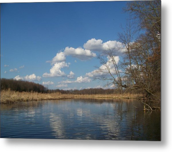 Raisen River Metal Print by Jennifer  King