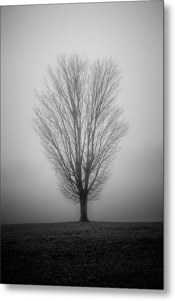 Ramblin' Tree Metal Print