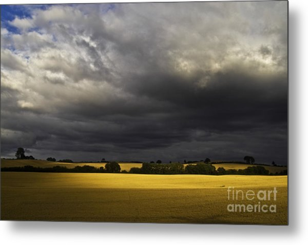 Rapefield Under Dark Sky Metal Print