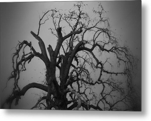Raven Tree Metal Print