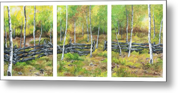 Ray's Meadow Metal Print