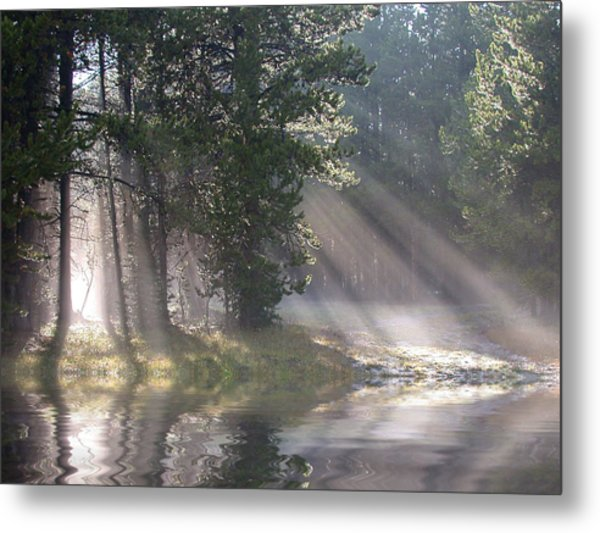 Metal Print featuring the photograph Rays Of Light by Shane Bechler